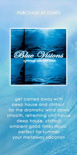 Purchase Blue Visions - A Journey Into Chill House - album - CD - at iTunes